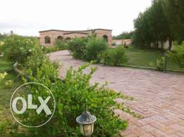 Farm house for rent In Sohar- Almultaqa