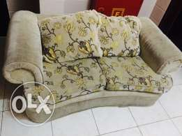 Single used well maintained cushioned sofa and 2 pillows.