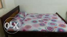 double coat bed for sale