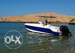 29ft Sapphire Marine Centre Console Sports Fishing Boat For Sale
