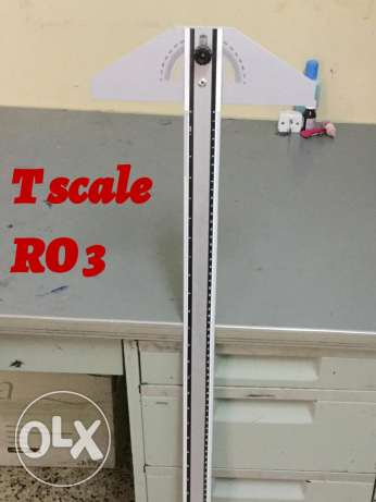 T scale