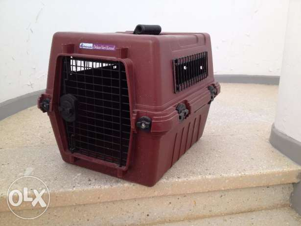 Petmate Cats and Dogs Carrier for sale