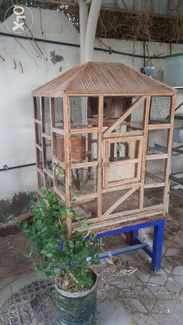 Beautiful Wide And Declarative Cage In A Good Condition.