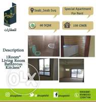Special apartment for rent