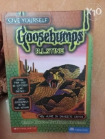 Alone in snakebite Canyon book of goosebumps