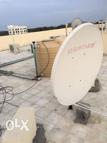 dish for sale